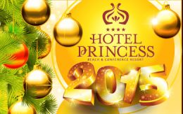 New Year\'s offer in Hotel Princess 2015