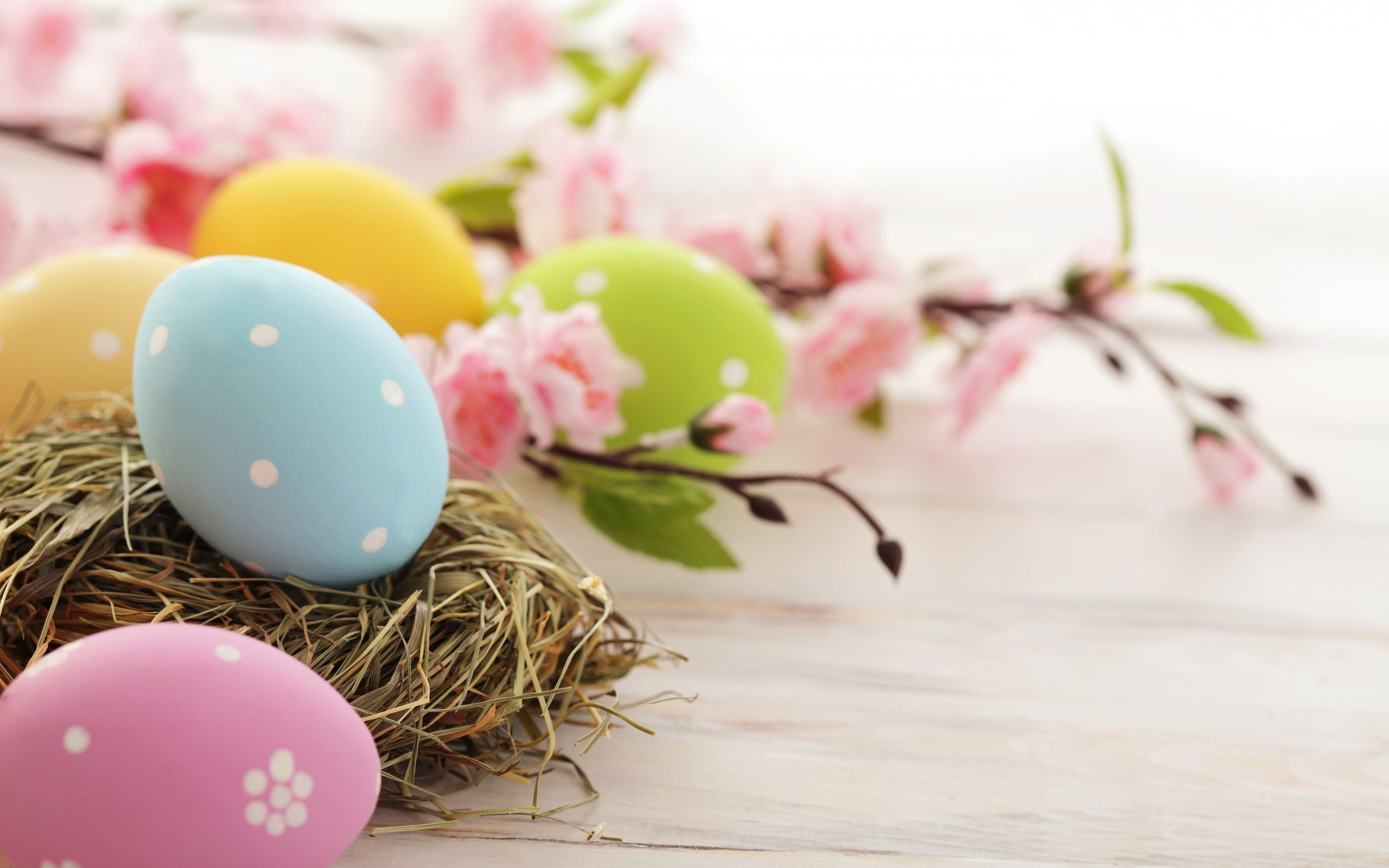 Hotel Princess Montenegro Special Offers Happy Easter